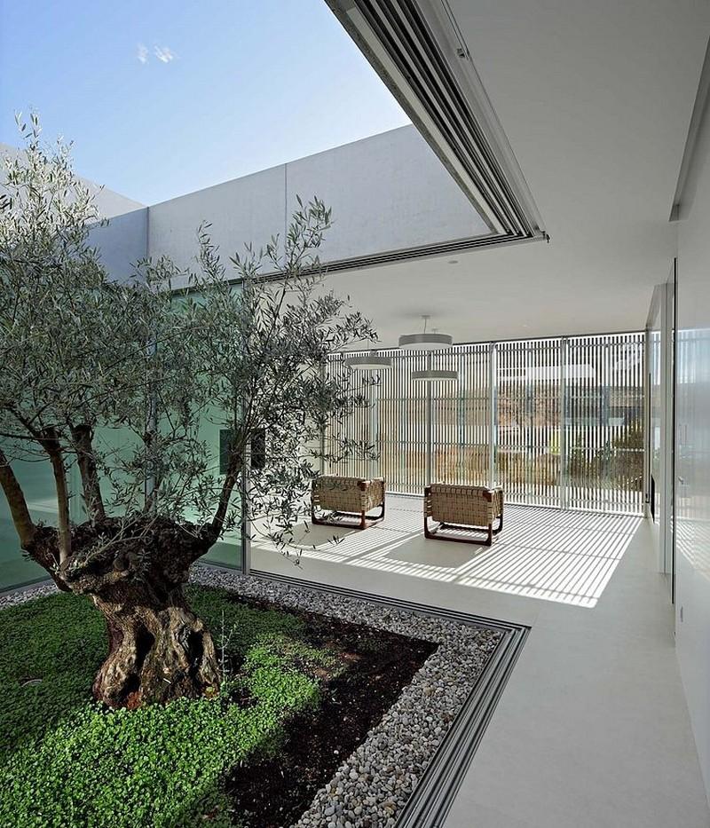 modern-residence-413